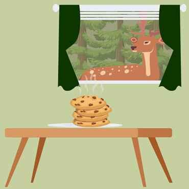 Cookies akzeptieren