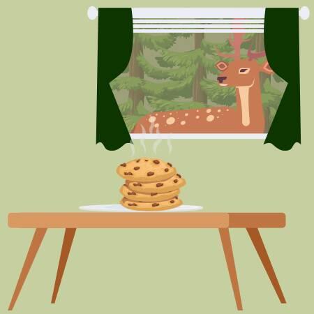 Cookies aktzeptieren