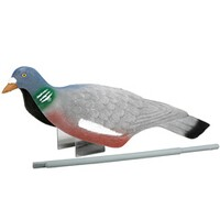 Bird decoy, Pigeon Shell