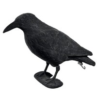 Bird decoy, Crow, feathered, 38 cm