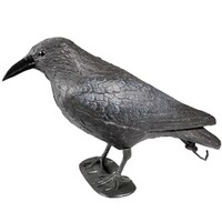 Bird decoy, Crow 38 cm with spring stick